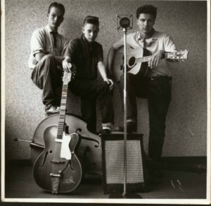 The Tin Star Trio